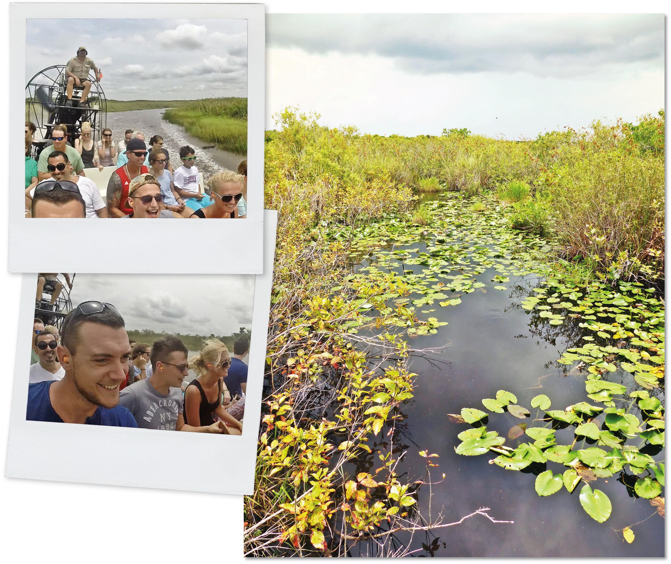usa, voyage, Floride, Miami, everglades, crocodiles, crickets, serpents, sunshine state, road trip, hydroglisseur