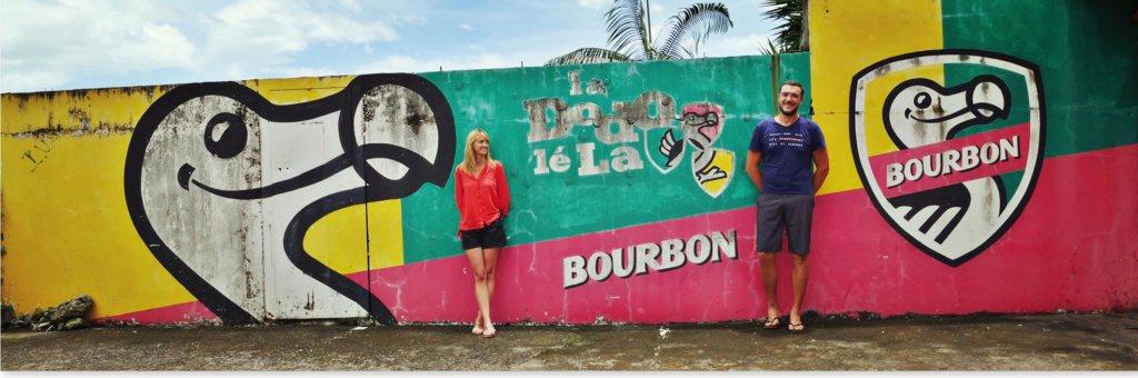 la réunion, la reunion, île, ile, voyage, vacances, tourisme, blog, couple, bourbon, dodo, mur, graffiti, nature
